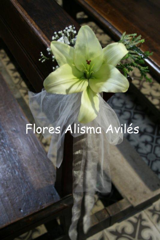 Flores Alisma Inicio Nupcial Promocion De Bodas
