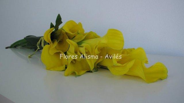 Elegante ramo de novia con clalas de flores Alidma de Avilés