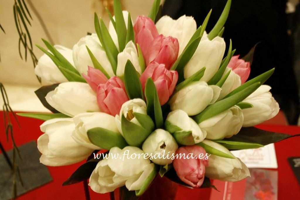 Bouquet de tulipanes