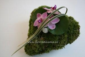 Corazón de musgo y orquideas
