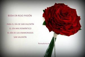 Rosmelia roja - Flores Alisma