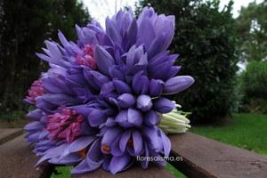 Ramo de novia  Flores Alisma - Avilés - Bouquet de crocus