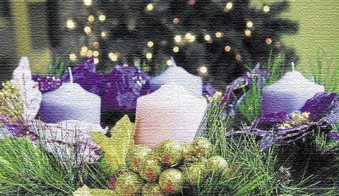 Flores Alisma - La Corona de Adviento - Flores Alisma