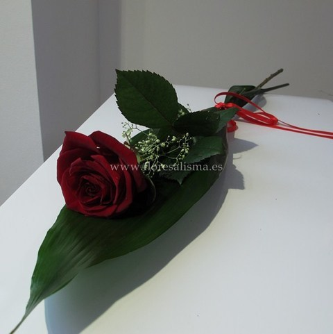 Flores Alisma - Rosa - Flores Alisma