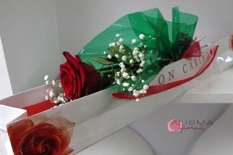 Flores Alisma - Caja con una rosa  - Flores Alisma