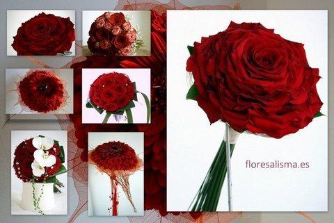 Flores Alisma -  Una boda en San Valentín - Flores Alisma