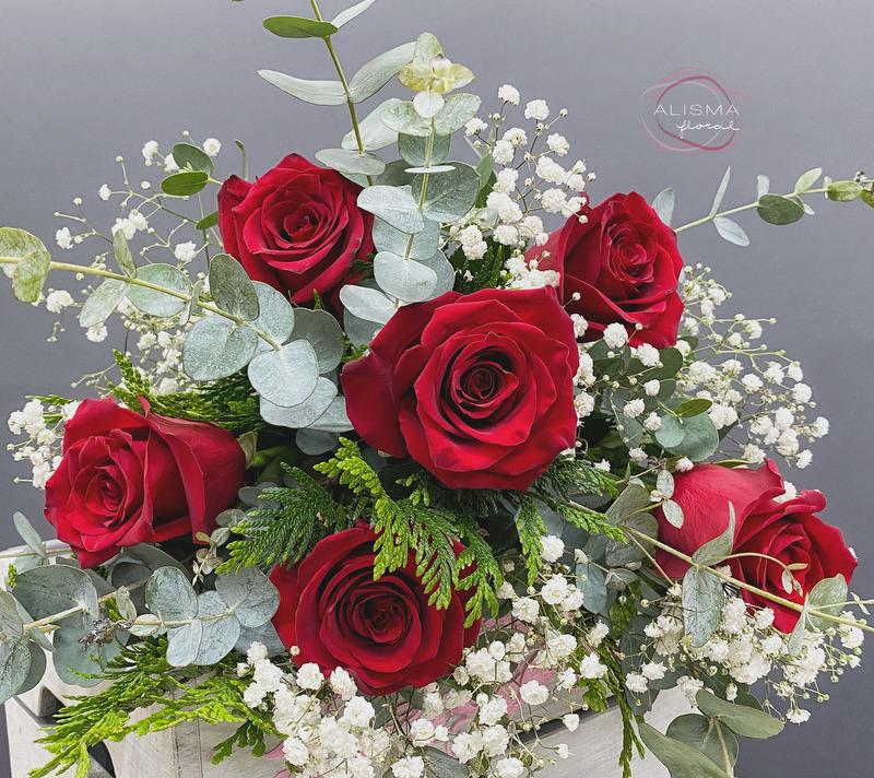 Flores Alisma - Ramo de 6 Rosas - Flores Alisma