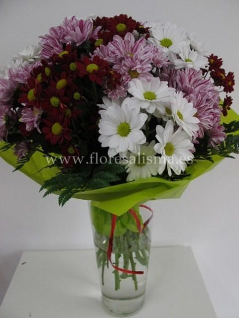 Flores Alisma - Ramo de margaritas