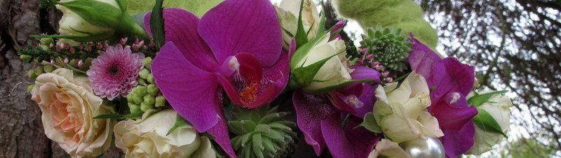 Flores Alisma en la I Edici�n de LA M�A VIDA, D�a de la moda en Avil�s